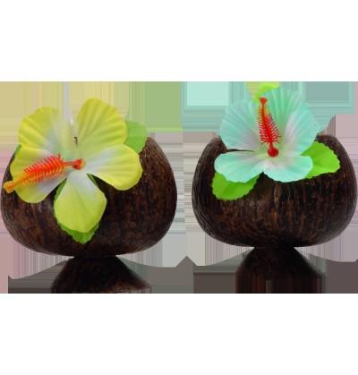 set de 2 vasos de coco hawi