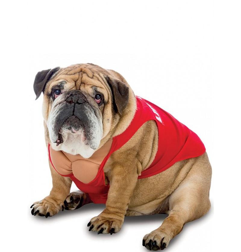 Disfraz de socorrista para perro