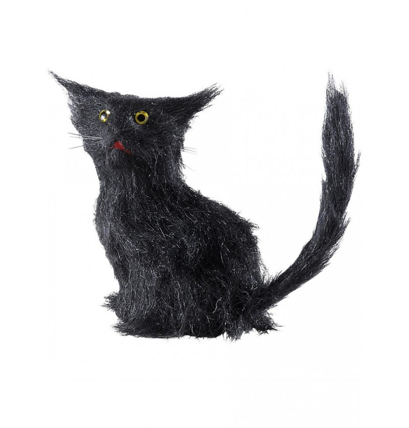 Gato negro de la mala suerte