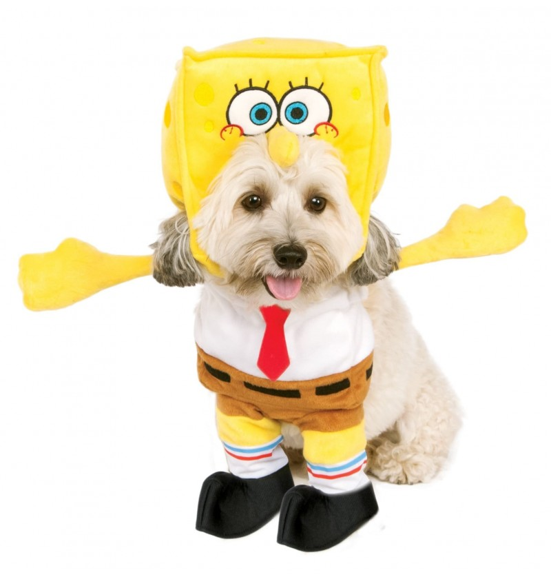 Disfraz de Bob Esponja para perro