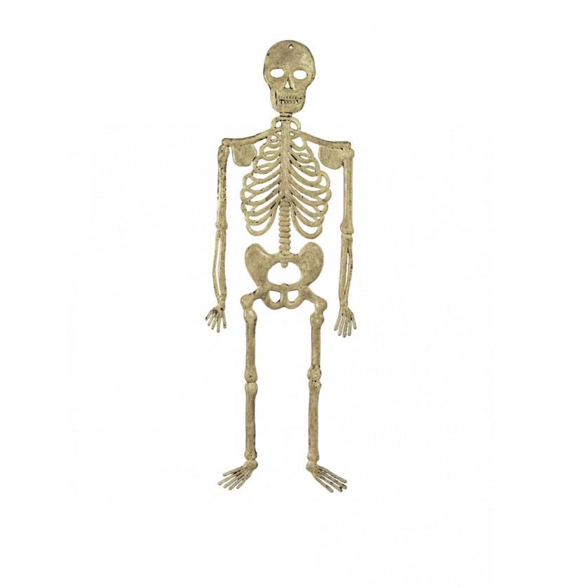 Esqueleto colgante de 32 cm.