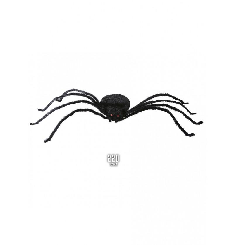 Araña gigante de 220 cm.