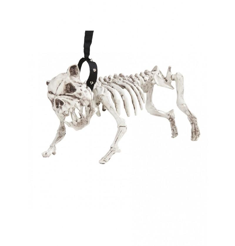 Esqueleto de perro con correa